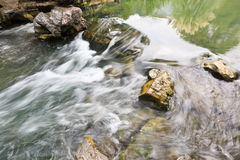 Stream in the summer Royalty Free Stock Photo