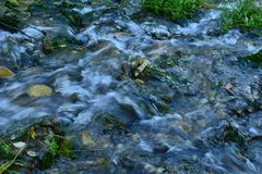 Stream in the summer in a short distance royalty free stock photography
