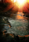 Stream in sunset Royalty Free Stock Images