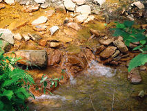 Stream to hydrogen sulfide mineral water Royalty Free Stock Photography