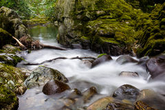 Stream in Tollymore forest. Stream rushing over rocks creating white spray in Tollymore Forest National Park, Newcastle county Down, Northern Ireland royalty free stock photography