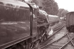 Stream Train Stock Photo