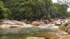 Stream of Transparent Mountain River by Rocks Green Slopes stock video