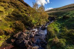 Stream with tree in the center, meadows and hills on sides, beautiful autumn colors with blue sky and puffy clouds royalty free stock photography