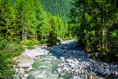A stream trickling through rocks in the forest Royalty Free Stock Images