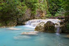 Stream in Tropical Forest Royalty Free Stock Photo