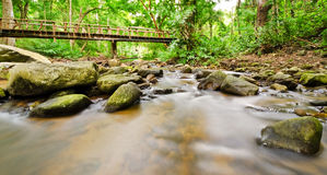 Stream in tropical rain forests Stock Photos