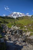 Stream across alpine meadows leads to views of Mount Rainier. A stream tumbling through alpine meadows leads to magnificent views of Mount Rainier.  Vertical Stock Image