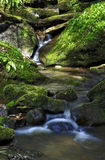 Stream tumbling over moss and rocks in a small beck Stock Images