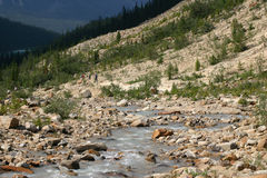 Stream under Mount Edith Cavell Stock Images