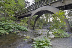 Stream Under the Wooden Bridge Arches Stock Images