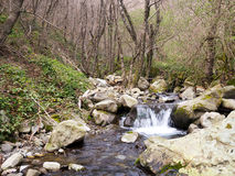 Stream in unspoiled nature, Lunigiana, north Tuscany. Spring. Stock Images