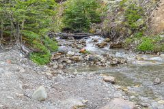 Stream in Ushuaia Forest. Glacier Martial trekking, Argentina stock photography