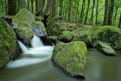 Stream valley. The Hell or German: Hoelle is a small stream-valley and also conservation area near Regensburg, Germany Stock Photo