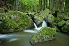 Stream valley. The Hell or German: Hoelle is a small stream-valley and also conservation area near Regensburg, Germany Royalty Free Stock Photos