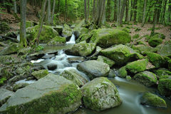 Stream valley. The Hell or German: Hoelle is a small stream-valley and also conservation area near Regensburg, Germany Stock Photos