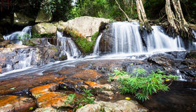 Stream in valley Royalty Free Stock Images