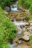 Stream in Vigo di Fassa Royalty Free Stock Photography