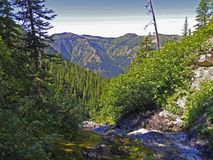 Stream and vista. This image of the small brook and the mountains was taken near Tranquil Lake in western Montana Royalty Free Stock Photography