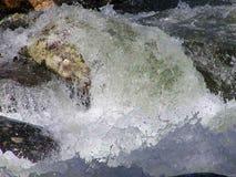 Stream Water Stock Image