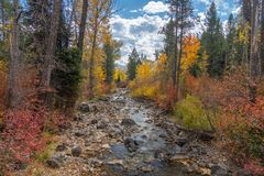 Stream of Water on a Colorful Autumn Day stock photography