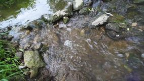 Stream of water in a creek stock footage