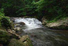 Stream water fall Royalty Free Stock Photo