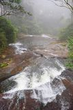 Stream with Water Flow going away in Misty Forest, Kerala, India. This is a photograph of a stream with flow of the water going away... The photograph is Stock Photography