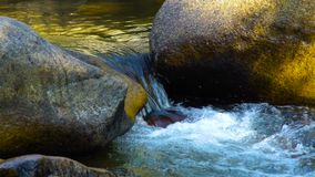 Stream water flow in rocky river in mountain close up. Rapid water streamamong stones in clear river. Beautiful. Landscape mountain river in wild nature stock video
