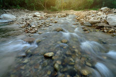 Stream water flowing past stones Stock Photo