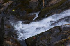 A stream of water flowing through rocks. On an Autumn day Stock Image