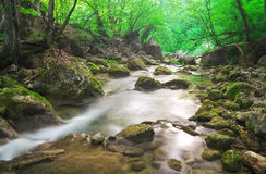 A stream of water in forest and mounta Stock Photos