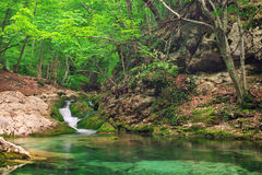 A stream of water in forest and mountain terrain. Stock Image