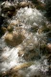 Stream of water in forest with stones. Close up Stock Images