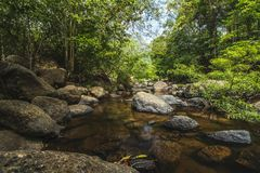 Stream water in the forest. Of Nang Rong waterfall part of the KhaoYai National Park in Nakhon Nayok Province of thailand Stock Images