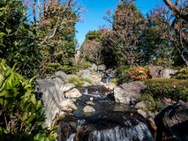 Stream of water in the garden royalty free stock photos