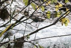 Birth of the Guadalquivir River. Stream of water in the Guadalquivir river near its source royalty free stock photo
