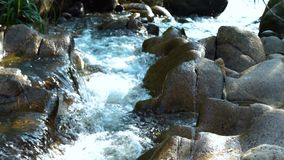 Stream water in rapid river in mountain close up. Water stream quickly flowing in rocky river. Fast flowing water stream. In mountain river stock video