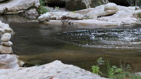 Stream of water in a river stock video footage