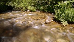 Stream Water and Rocks stock footage