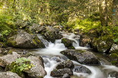 Stream of water Royalty Free Stock Photos