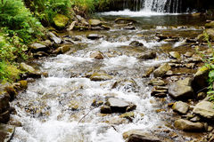 Stream. Water waterfall forest rock Stock Photography