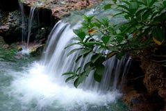 Stream and waterfall Stock Photo