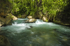 Stream and waterfall Stock Image