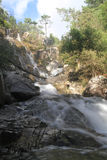 Stream waterfall Stock Photos