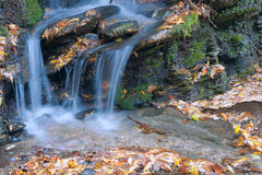 Stream waterfall Stock Photography