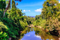 Stream from waterfall in forest of Thailand Royalty Free Stock Photo