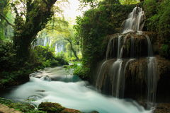Stream and waterfall landscape with big tree on it Stock Images
