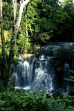 Stream of Waterfall lash down Royalty Free Stock Images