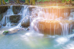 Stream waterfall in national deep tropical forest Royalty Free Stock Photography